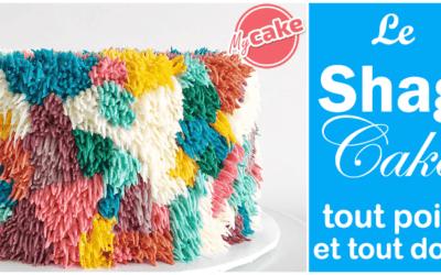 [Recette] el pastel de pelusa fácil e inratable + consejos!
